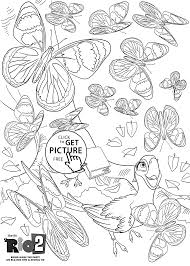 and butterflies coloring pages for kids printable free rio 2