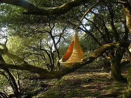cozy cacoon is part hammock part tree tent all fun treehugger