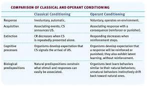 operant conditioning copy2 on emaze