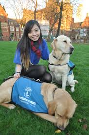 luu guide dogs society u2013 the official leeds university union guide