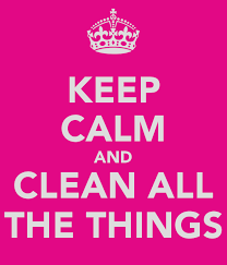 Clean All The Things Meme - clean all the things meme generator all best of the funny meme