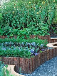 raised bed gardening ideas hgtv