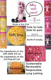 Zebra Home Decor by Best 25 Pink Zebra Home Ideas On Pinterest Pink Zebra Sprinkles
