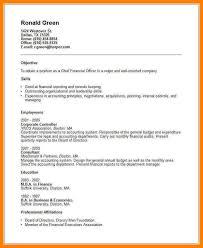 Vp Finance Resume Examples Cfo Resume Lukex Co