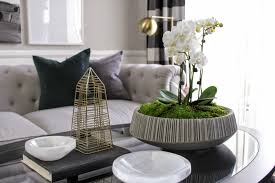 furniture orchid coffee table centerpiece strange oscar bravo home create a beautiful orchid arrangement in minutes