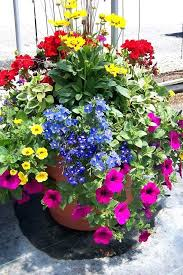 Patio Container Garden Ideas Patio Container Garden Innovative Flowers For Container Gardening
