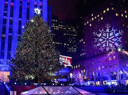 the most beautiful christmas trees in world clipgoo tree