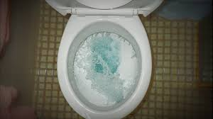 Why Have A Bidet How To Unclog A Toilet When You Don U0027t Have A Plunger Or Toilet
