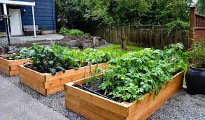 95 patio vegetable garden balcony small space vegetable garden