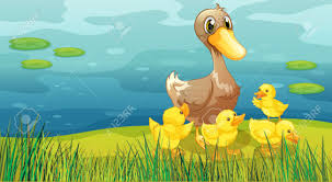 illustration of a duck and her ducklings at the riverbank royalty