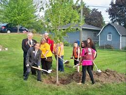 Trees Worldwide South Elgin Lions Jump Into Tree Planting