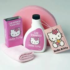 pink kitty car wash valet gift