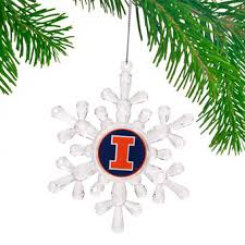 illinois fighting illini decorations illinois