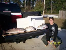 navarre westside thanksgiving bounty pensacola fishing forum