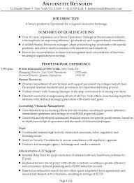 Interior Design Resume Sample Good Character Analysis Essay Salary Requirement In Resume Esl