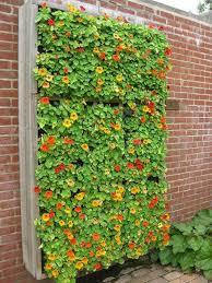 flower garden small space outdoor vertical flower garden small