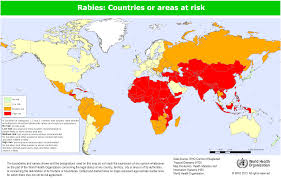 Africa And Asia Map by Rabies Vaccination Before Travelling Do I Need One