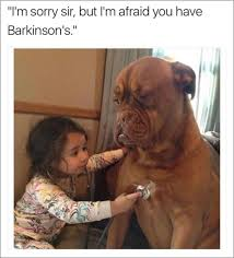 Home Memes - memes about dogs are excited you re home 44 photos thechive