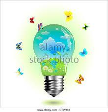 butterfly lightbulb stock photos u0026 butterfly lightbulb stock