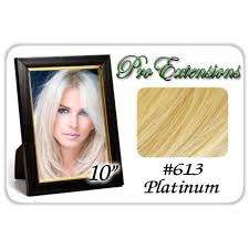 pro extensions pro extensions 10 613 platinum clip in human hair