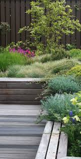 Roof Garden Plants