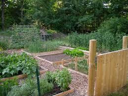 vegetable garden ideas designs raised gardens vignette design