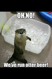 Funny Animals Meme - funny animals and beer memes pics images photos pictures bajiroo