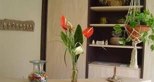 chambre d hote aumont aubrac les sentiers fleuris in aumont aubrac 25462