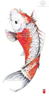 orange koi fish wanting a koi fish to cover the tribal dragon on