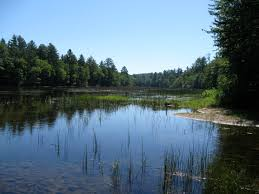 New Hampshire lakes images Ossipee nh properties for sale ossipee waterfront homes for sale jpg