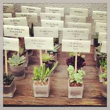 wedding party favors the 25 best succulent party favors ideas on succulent