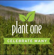 59 best tree partners images on tree planting a tree