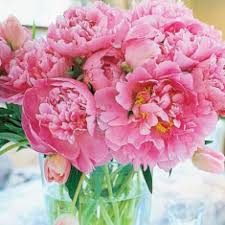 e flowers miami florist flower delivery by miami flowers
