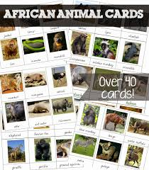 american mammals cards for montessori activities