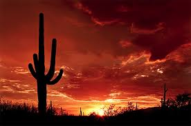 arizona photographers the best locations in arizona for photography loaded landscapes