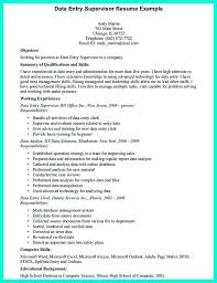 Resume Of Data Entry Operator Sample Resume Newspaper Delivery The Count Of Monte Cristo Essay