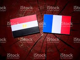 Egypts Flag Egyptian Flag With French Flag On A Tree Stump Isolated Stock