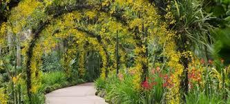 8 of the world u0027s best botanical gardens cheapflights
