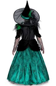 witch costume for cats wizard of oz deluxe wicked witch of the west girls u0027 child