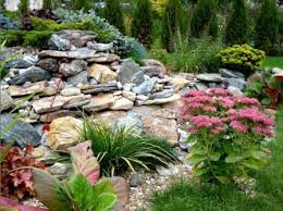 garden captivating rock garden designs stunninng green and gray