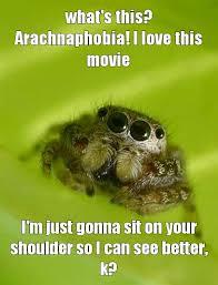 Spider Bro Meme - spiderbro meme by priest216guy memedroid