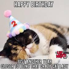 Funny Cat Birthday Meme - happy birthday meme funny 30 naughty birthday memes cake meme