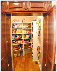walk in kitchen pantry ideas walk in kitchen pantry ideas home design ideas