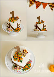 ny photographer thanksgiving birthday cake smash