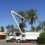 discount tree service tree services palm desert ca phone