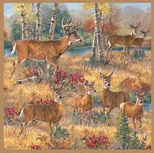 deer cabin lodge bathroom accessories designer shower curtain free