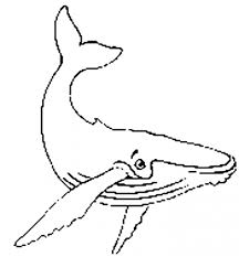 humpback whale coloring page clipart panda free clipart images