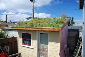 Backyard House Shed by To Turn Your Barn Or Shed Into A Livable Tiny House Is A Tiny