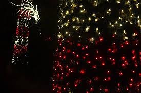 Botanical Gardens Atlanta Christmas Lights by 100 Botanical Gardens Atlanta Christmas Lights Butchart