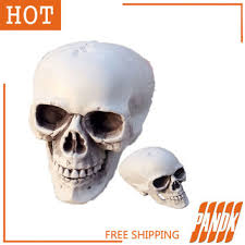 Halloween Skull Decorations Shop Skull And Bones Decorations On Wanelo
